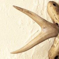 Forked Antler Curtain Rod Finials – Set of 2