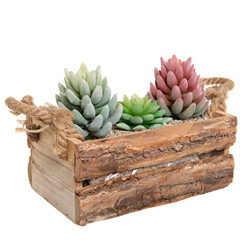 Country Rustic Natural Wood Plant Box Pot / Windowsill Flower Container / Small Decor Holder – MyGift®