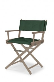 Telescope Casual Heritage Dining Height Director Chair, Rustic Grey Finish with Forest Green Cover