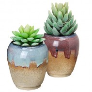 Set of 2 Tan, Red, & Blue Small Rustic Style Ceramic Plant Flower Container Planter Box Pots – MyGift®