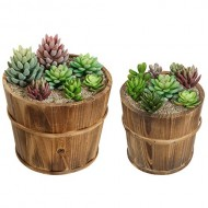 Set of 2 Country Rustic Brown Wood Succulent Pots Planters / Flower Buckets – MyGift®